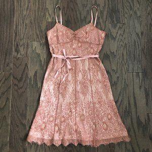 Ann Taylor Pink & Blush Lace Aline Dress